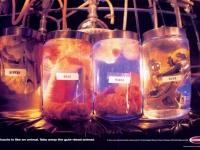 shimano_components_guts_jars